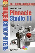 Александр Чиртик, Михаил Беляков - Pinnacle Studio 11