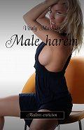 Vitaly Mushkin -Male harem. Modern eroticism
