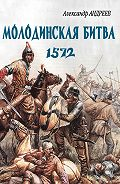 Александр Радьевич Андреев - Неизвестное Бородино. Молодинская битва 1572 года