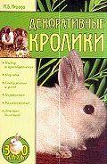 Маргарита Нерода -Декоративные кролики