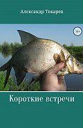 Александр Токарев -Короткие встречи