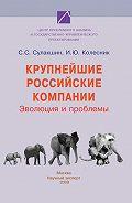 И. Ю. Колесник -Крупнейшие российские компании. Эволюция и проблемы