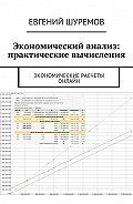 Евгений Шуремов -Экономический анализ: практические вычисления. Экономические расчеты онлайн