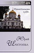 Юрий Шестопал -Дорогой благочестия и добра…
