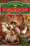 Вадим Арчер - Грибная энциклопедия