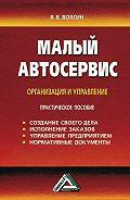 Владислав Волгин -Малый автосервис: Практическое пособие