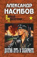 Александр Насибов - Долгий путь в лабиринте