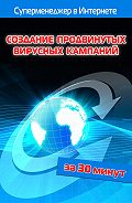 Илья Мельников, Лариса Бялык - Создание продвинутых вирусных кампаний