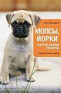 Арсений Нестеров -Мопсы, йорки и другие собачки той-пород