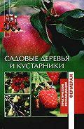 Оксана Петросян - Садовые деревья и кустарники