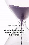 Юрий Низовцев -What is time? How and on the basis of what it is formed?