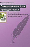 Александр Цыпкин -Племяш-наш или Куда приводят звонки