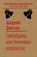 Андрей Зинчук -Грибабушка, или Немножко колдовства