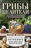 Ирина Филиппова -Грибы-целители. Чага, трутовик, кап, ведьмина метла, груздь, волнушка, веселка, дождевик, молочный гриб, рисовый гриб…