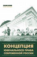 Коллектив авторов - Концепция ювенального права современной России