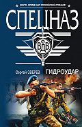 Сергей Зверев -Гидроудар