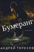 Андрей Терехов -Бумеранг
