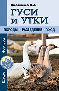 Любовь Стрельникова - Гуси и утки