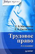 Е. В. Магницкая, Е. Н. Евстигнеев - Трудовое право