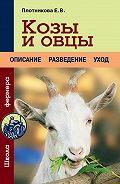 Елена Плотникова -Козы и овцы