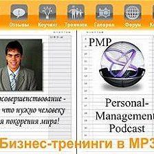 Дмитрий Потапов - Делегирование полномочий: записки на стикерах [выпуск 1-8]