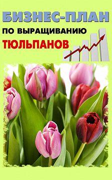 Павел Шешко - Бизнес-план по выращиванию тюльпанов