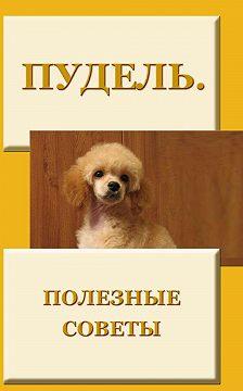 Илья Мельников - Пудель. Полезные советы