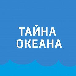 Павел Картаев - Тюлени