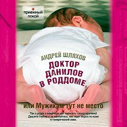 Андрей Шляхов - Доктор Данилов в роддоме, или Мужикам здесь не место