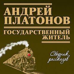 Андрей Платонов - Государственный житель