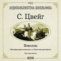 Стефан Цвейг - Невозвратимые мгновения. Новеллы