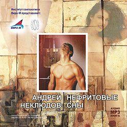 Андрей Неклюдов - Нефритовые сны