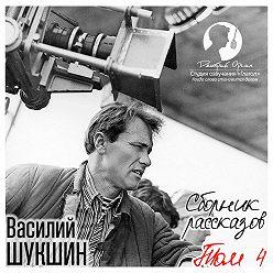 Василий Шукшин - Сборник рассказов. Том 4