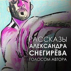 Александр Снегирёв - Бил и целовал