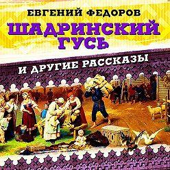 Евгений Федоров - Шадринский гусь и другие рассказы