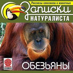 Коллектив авторов - Рассказы классиков о животных. Обезьяны