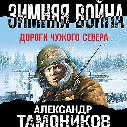 Александр Тамоников - Зимняя война. Дороги чужого севера