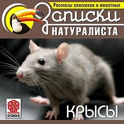 Коллектив авторов - Рассказы классиков о животных. Крысы