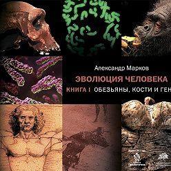 Александр Марков - Обезьяны, кости и гены