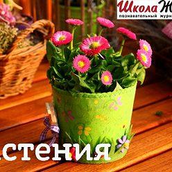 Валентина Пономарева - На какие рекорды живучести способны… растения?