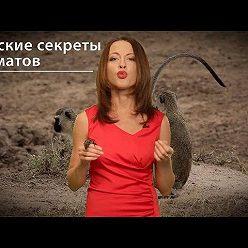 Евгения Тимонова - Женские секреты приматов