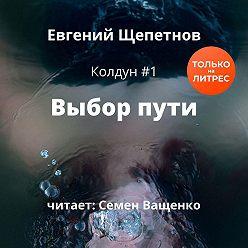 Евгений Щепетнов - Выбор пути