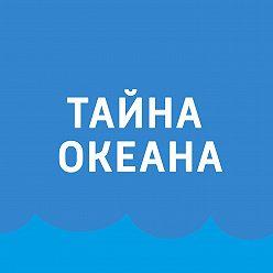 Павел Картаев - Для чего мы изучаем океан?