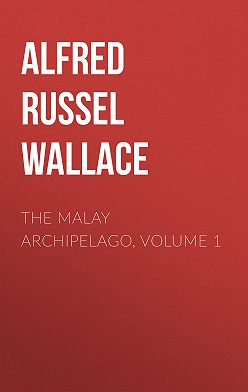 Alfred Wallace - The Malay Archipelago, Volume 1