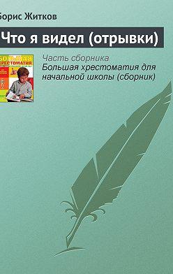 Борис Житков - Что я видел (отрывки)