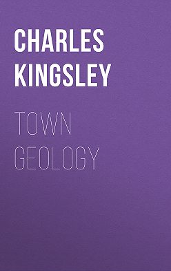 Charles Kingsley - Town Geology