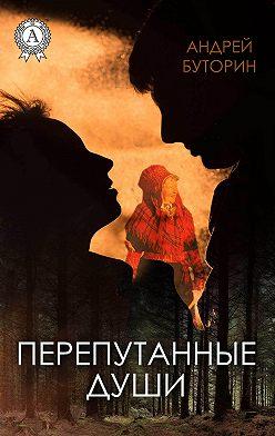Андрей Буторин - Перепутанные души