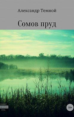 Александр Темной - Сомов пруд