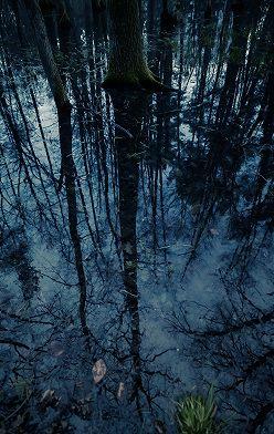 Анастасия Иванова - Северная Ведьма