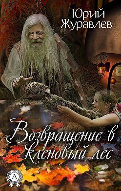 Юрий Журавлев - Возвращение в кленовый лес